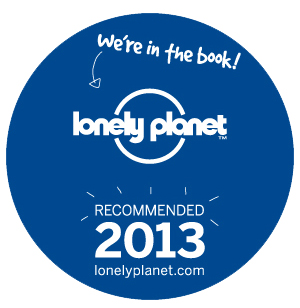 Lonely Planet Decal
